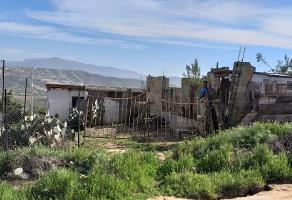 Foto de terreno habitacional en venta en san adan , ed ruiz cortínez, ensenada, baja california, 0 No. 01