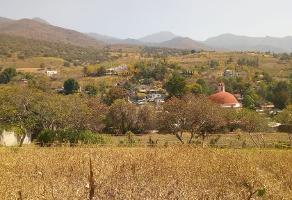 Foto de terreno habitacional en venta en  , san agustin etla, san agustín etla, oaxaca, 16257305 No. 01