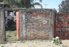 Foto de terreno comercial en venta en 5 de mayo sur , san agustin, tlajomulco de zúñiga, jalisco, 3817751 No. 01