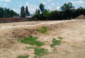 Foto de terreno habitacional en renta en  , san agustin, tlajomulco de zúñiga, jalisco, 5523858 No. 01