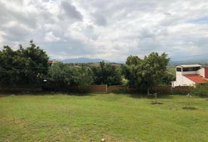 Foto de terreno habitacional en venta en san andres 1, san andres huayapam, san andrés huayápam, oaxaca, 0 No. 01
