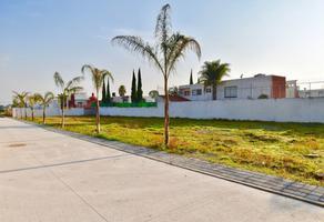 Foto de terreno habitacional en venta en san andrés cholula, puebla , ex-hacienda concepción morillotla, san andrés cholula, puebla, 14246265 No. 01