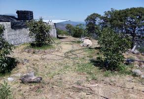 Foto de terreno habitacional en venta en san andrés coru 0 , san andres coru, ziracuaretiro, michoacán de ocampo, 18759041 No. 01