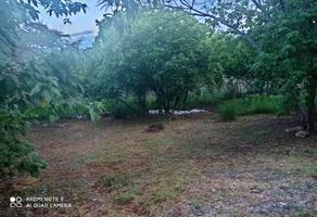 Foto de terreno habitacional en venta en san andrés huayapan , san andres huayapam, san andrés huayápam, oaxaca, 0 No. 01