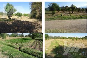Foto de terreno habitacional en venta en  , san andrés hueyacatitla, san salvador el verde, puebla, 17378877 No. 01