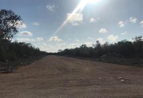 Foto de terreno habitacional en venta en  , san antonio chel, hunucmá, yucatán, 15812131 No. 01