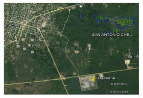 Foto de terreno habitacional en venta en  , san antonio chel, hunucmá, yucatán, 17892738 No. 01