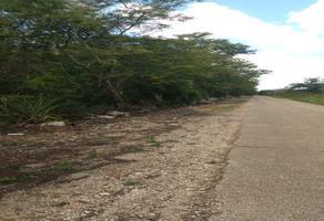 Foto de terreno habitacional en venta en  , san antonio chel, hunucmá, yucatán, 0 No. 01