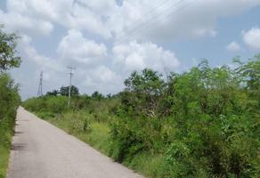 Foto de terreno habitacional en venta en  , san antonio chel, hunucmá, yucatán, 21970301 No. 01