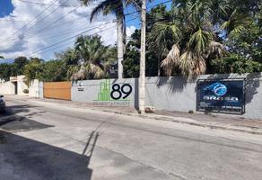 Foto de local en renta en  , san antonio cinta iii, mérida, yucatán, 0 No. 01