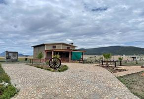 Foto de terreno habitacional en venta en  , san antonio de las alazanas, arteaga, coahuila de zaragoza, 0 No. 01