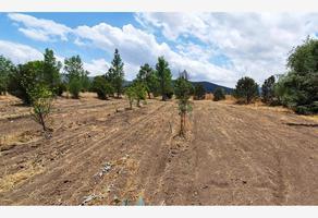 Foto de terreno habitacional en venta en san antonio de las alazanas , san antonio de las alazanas, arteaga, coahuila de zaragoza, 0 No. 01