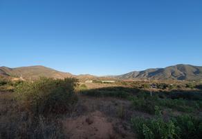 Foto de terreno habitacional en venta en  , san antonio de las minas, ensenada, baja california, 14600511 No. 01