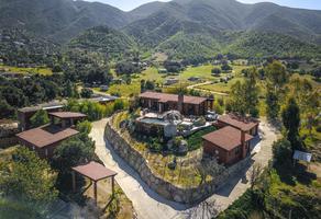 Foto de rancho en venta en  , san antonio de las minas, ensenada, baja california, 14600515 No. 01