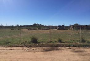 Foto de rancho en venta en  , san antonio de las minas, ensenada, baja california, 16664476 No. 01