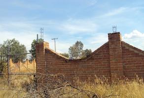 Foto de terreno habitacional en venta en  , san antonio de los horcones, jesús maría, aguascalientes, 17003490 No. 02