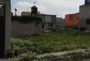 Foto de terreno habitacional en venta en  , san antonio de san pablo tecalco, tecámac, méxico, 0 No. 01