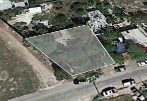 Foto de terreno habitacional en venta en  , san antonio kaua ii, mérida, yucatán, 10071293 No. 01