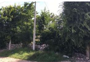 Foto de terreno habitacional en venta en  , san antonio kaua ii, mérida, yucatán, 13946715 No. 01