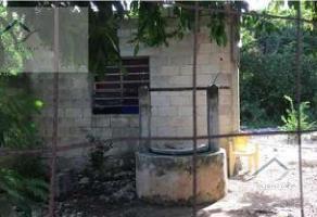 Foto de terreno habitacional en venta en  , san antonio kaua, mérida, yucatán, 11656832 No. 01