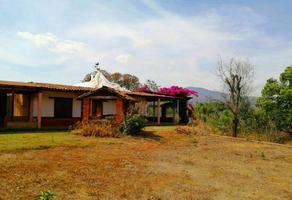 Foto de casa en venta en  , san antonio, lagunillas, michoacán de ocampo, 0 No. 01