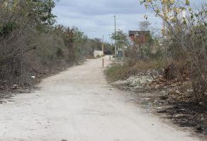 Foto de terreno habitacional en venta en  , san antonio, mérida, yucatán, 0 No. 01
