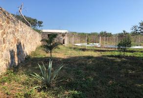 Foto de rancho en venta en san antonio tehuitz s/n , bosques de kanasín, kanasín, yucatán, 12401107 No. 01