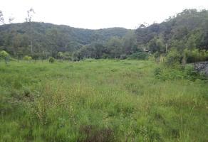 Foto de terreno habitacional en renta en san antonio , valle de bravo, valle de bravo, méxico, 5723747 No. 01