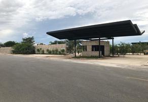 Foto de terreno habitacional en venta en  , san antonio xluch ii, mérida, yucatán, 10698349 No. 01