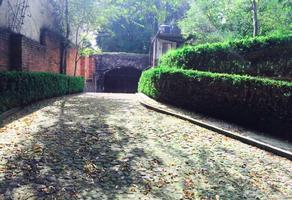 Foto de terreno habitacional en venta en  , san bartolo ameyalco, álvaro obregón, df / cdmx, 10965548 No. 01