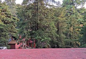 Foto de casa en renta en  , san bartolo ameyalco, álvaro obregón, df / cdmx, 17913460 No. 01