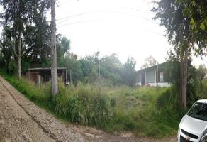 Foto de terreno habitacional en venta en  , san bartolomé xicomulco, milpa alta, df / cdmx, 0 No. 01