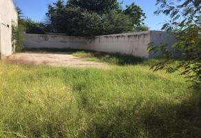 Foto de terreno comercial en renta en - , san benito, hermosillo, sonora, 0 No. 01