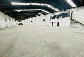 Foto de nave industrial en renta en  , san bernardino tlaxcalancingo, san andrés cholula, puebla, 0 No. 01
