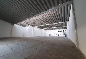 Foto de nave industrial en renta en  , san carlos, guadalajara, jalisco, 0 No. 01
