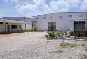 Foto de nave industrial en venta en  , san carlos umán, umán, yucatán, 0 No. 01