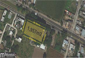 Foto de terreno habitacional en venta en  , san carlos, yautepec, morelos, 18472261 No. 01
