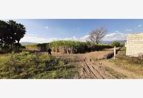 Foto de terreno habitacional en venta en  , san carlos, yautepec, morelos, 18912808 No. 01