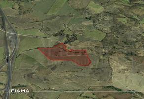 Foto de terreno habitacional en venta en  , san cayetano, tepic, nayarit, 16412883 No. 01