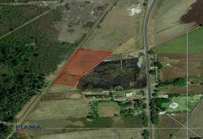 Foto de terreno habitacional en venta en  , san cayetano, tepic, nayarit, 20913813 No. 01
