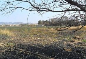 Foto de terreno habitacional en venta en san cristobal de la barranca , valle de los molinos, zapopan, jalisco, 6416630 No. 01