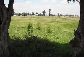 Foto de terreno habitacional en venta en  , san cristóbal tepatlaxco, san martín texmelucan, puebla, 6604151 No. 01