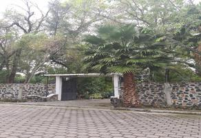 Foto de casa en venta en  , san diego acapulco, atlixco, puebla, 16944685 No. 01