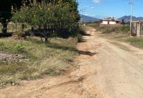 Foto de terreno habitacional en venta en san felipe de jesús s/n , el arenal, el arenal, jalisco, 12065682 No. 01