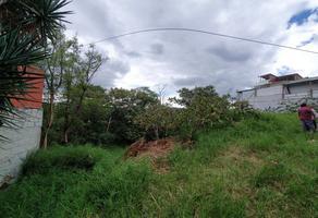 Foto de terreno habitacional en venta en  , san felipe del agua 1, oaxaca de juárez, oaxaca, 17884269 No. 01