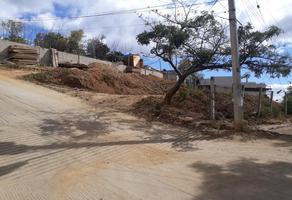 Foto de terreno habitacional en venta en  , san felipe del agua 1, oaxaca de juárez, oaxaca, 0 No. 01