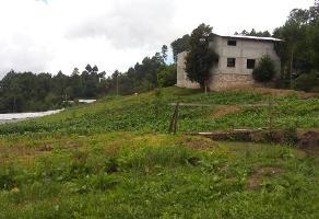 Foto de casa en venta en  , san felipe ecatepec, san cristóbal de las casas, chiapas, 0 No. 01