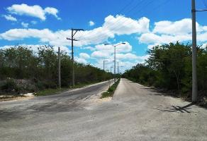 Foto de terreno habitacional en venta en  , san francisco de asís, conkal, yucatán, 14178290 No. 01