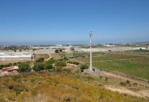 Foto de terreno habitacional en venta en san francisco , reforma, ensenada, baja california, 9130138 No. 01