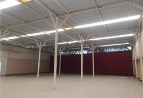 Foto de bodega en renta en  , san francisco sabinal, tuxtla gutiérrez, chiapas, 18097385 No. 01
